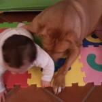 Giochi per neonati da 0 a 6 mesi