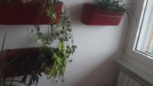 fioriera orto verticale