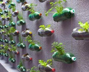 bottiglie orto verticale