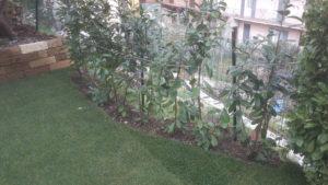 Tappeto erboso a rotoli per giardino