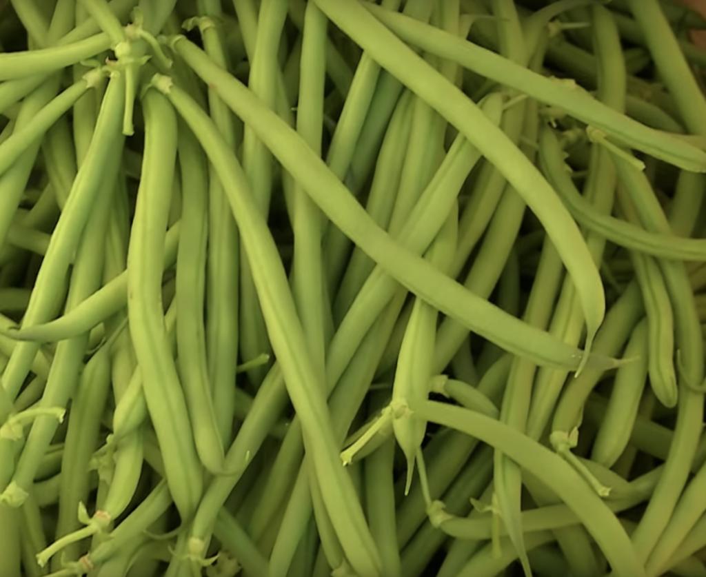 fagiolini - il frutto