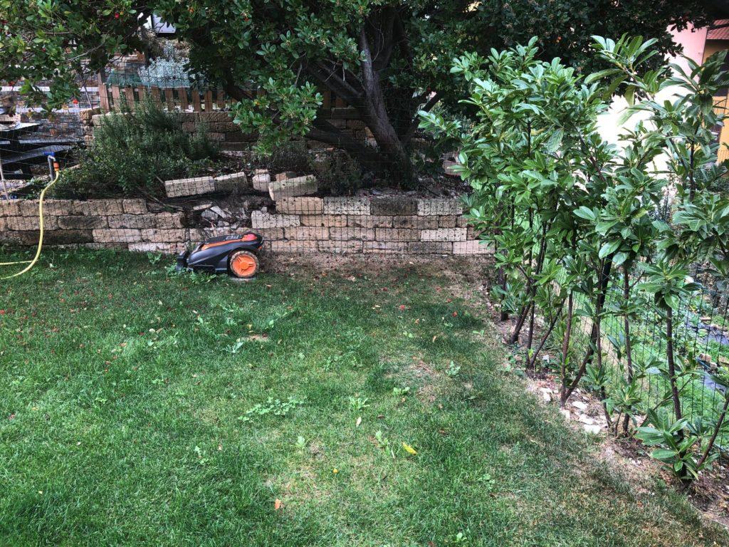 giardino a dicembre - lavori