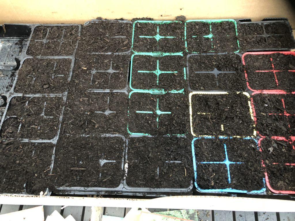 orto a marzo - la semina
