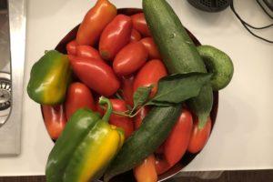 l'orto a luglio - la verdura in tavola